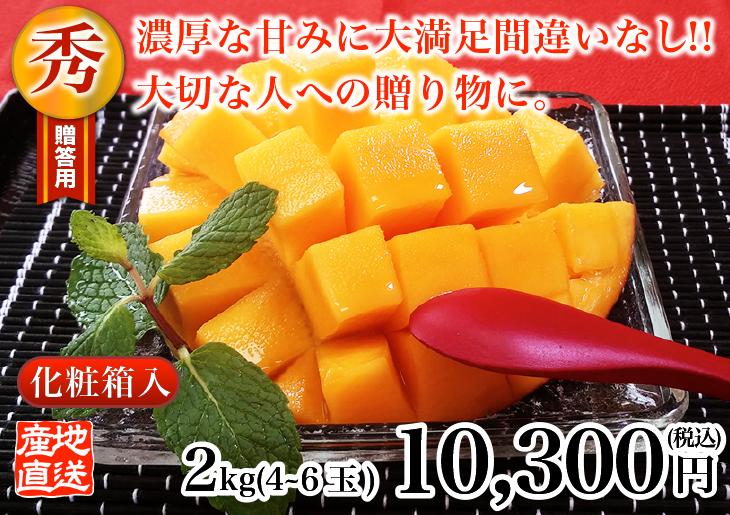 燦々マンゴー 秀2.0kg