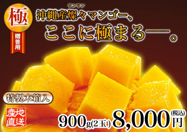 特秀品級マンゴー・極 900g
