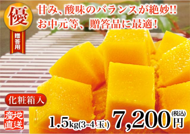 燦々マンゴー 優1.5kg