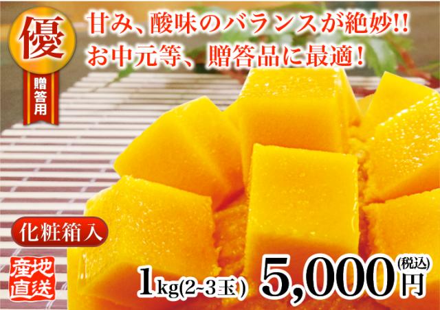 燦々マンゴー 優1.0kg