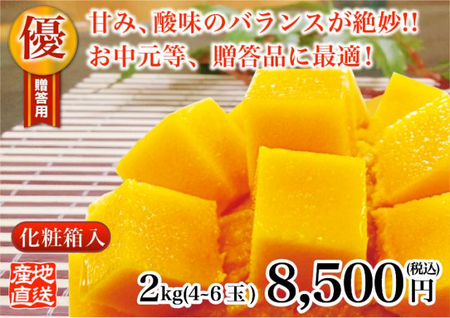 燦々マンゴー 優2.0kg