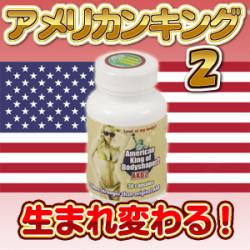 アメリカンキング2