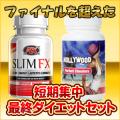 【送料無料】スリムFX&ハリウッドパーフェクトチーターズセット