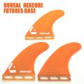 dorsal fin