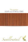 【ココナッツブラウン】毛束 ex-350