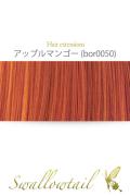 【アップルマンゴー】毛束 ex-bor0050