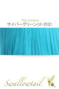 【サイバーグリーン】毛束 ex-tf2512