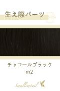 【チャコールブラック】生え際パーツ 手植えレース生地毛束 fl-m2