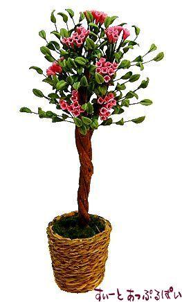 背の高い観賞植物の鉢植え お花付き BDA1105