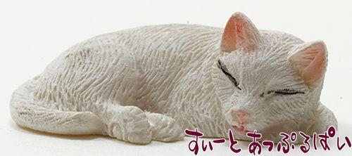 白い眠り猫 IM65445