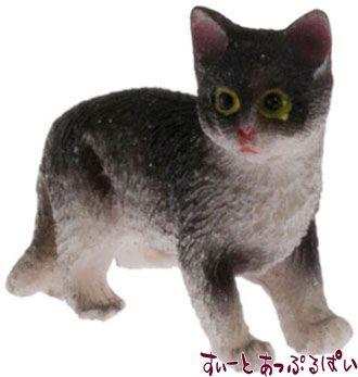 白黒猫 たっち IM65488