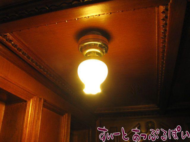 【3V電池式LED照明】 チューリップランプ   HKL-TL-316