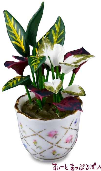 【ロイターポーセリン】 観葉植物の鉢植え RP1433-5