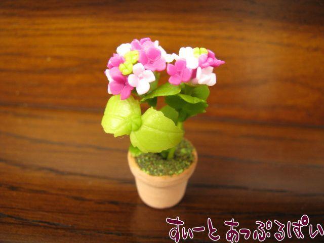 あじさいの鉢植え ピンク SMFL90