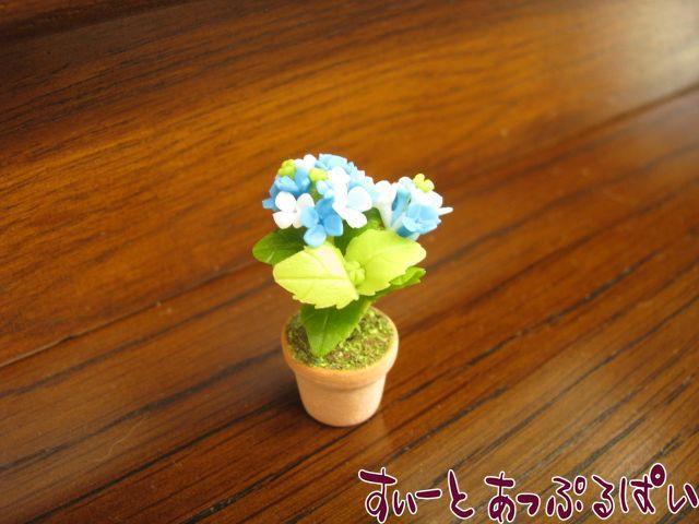 あじさいの鉢植え ブルー SMFL91