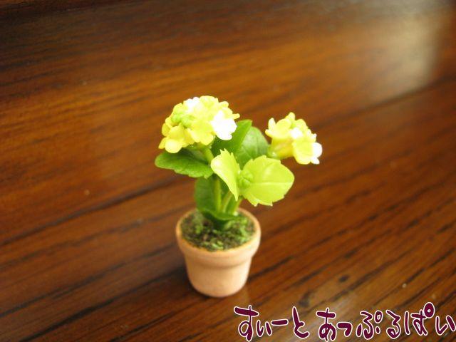 あじさいの鉢植え 黄色 SMFL92