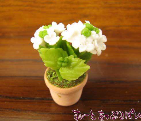 あじさいの鉢植え 白 SMFL95