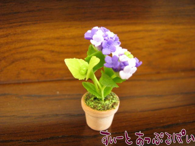 あじさいの鉢植え 紫 SMFL89