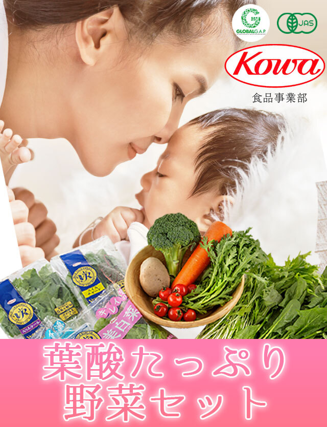 【送料無料】おいしい葉酸 オーガニック野菜セット 5種類以上