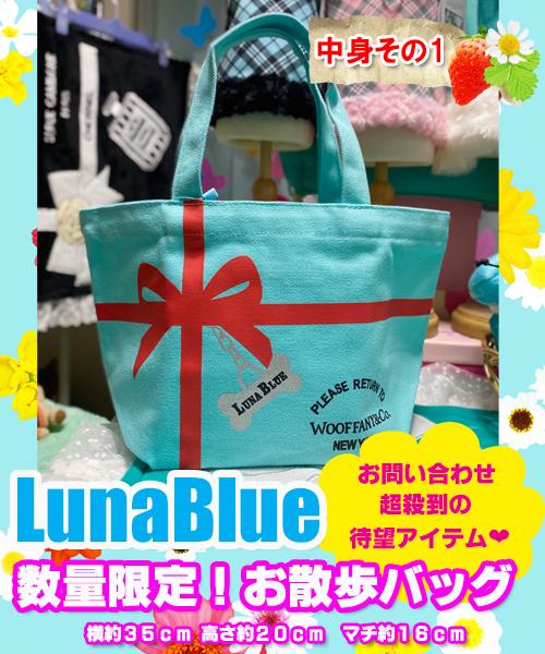 【Luna Blue★ルナブルー】XXSサイズ限定ハッピーバッグ
