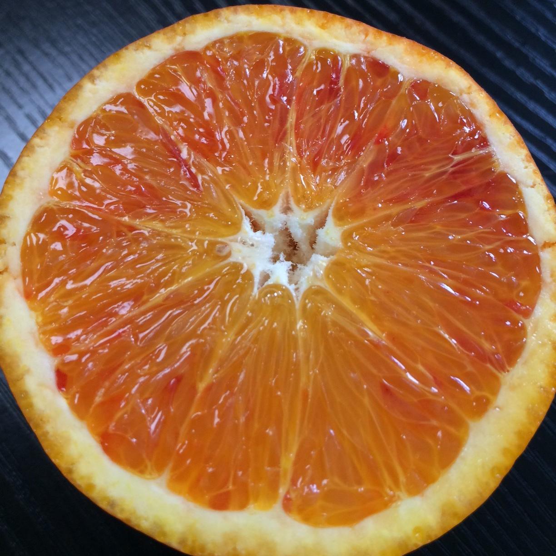 愛媛県産 ブラッドオレンジ 約5kg(20~32玉)【048】