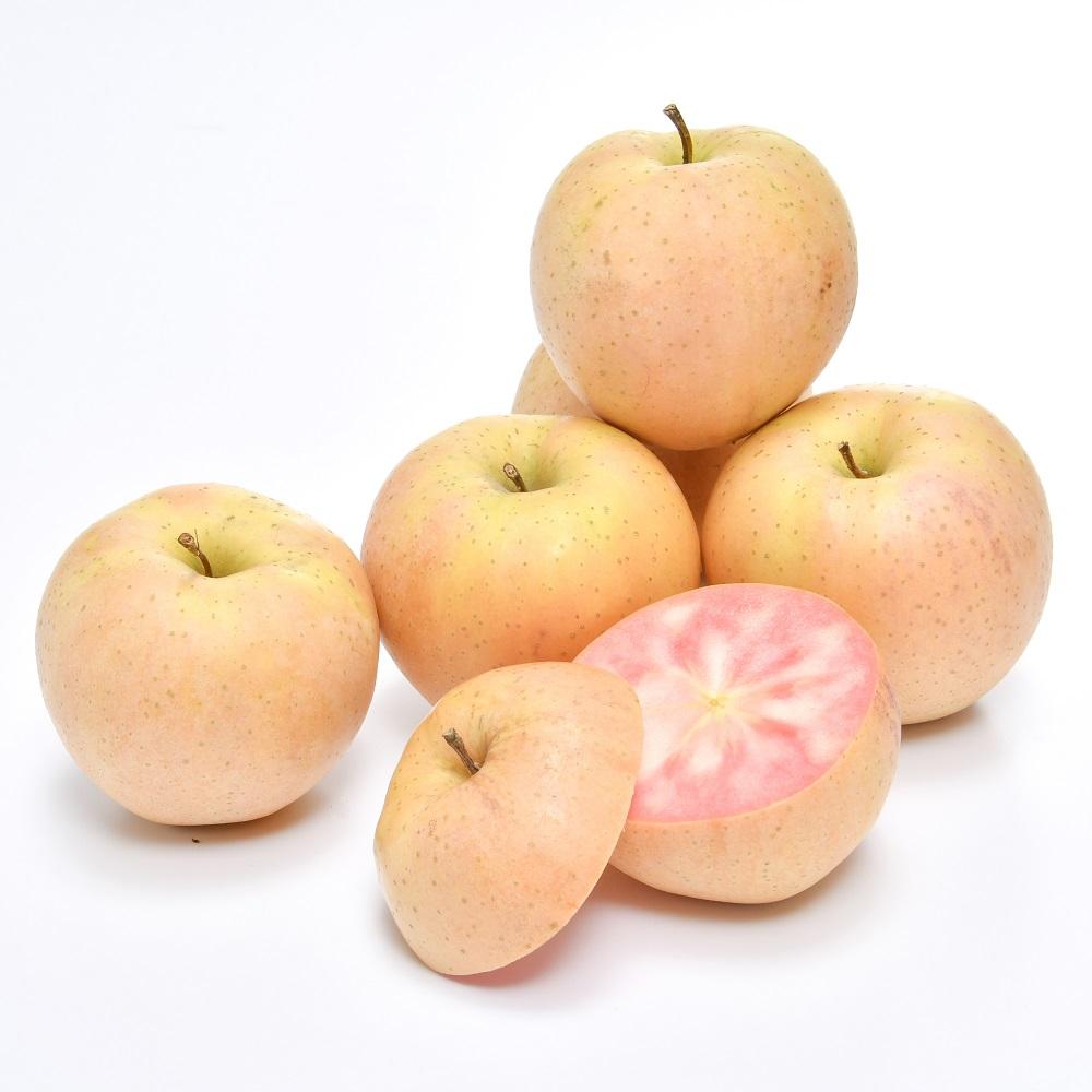 信州 赤果肉りんご なかののきらめき 秀5kg(14~20玉) No.388