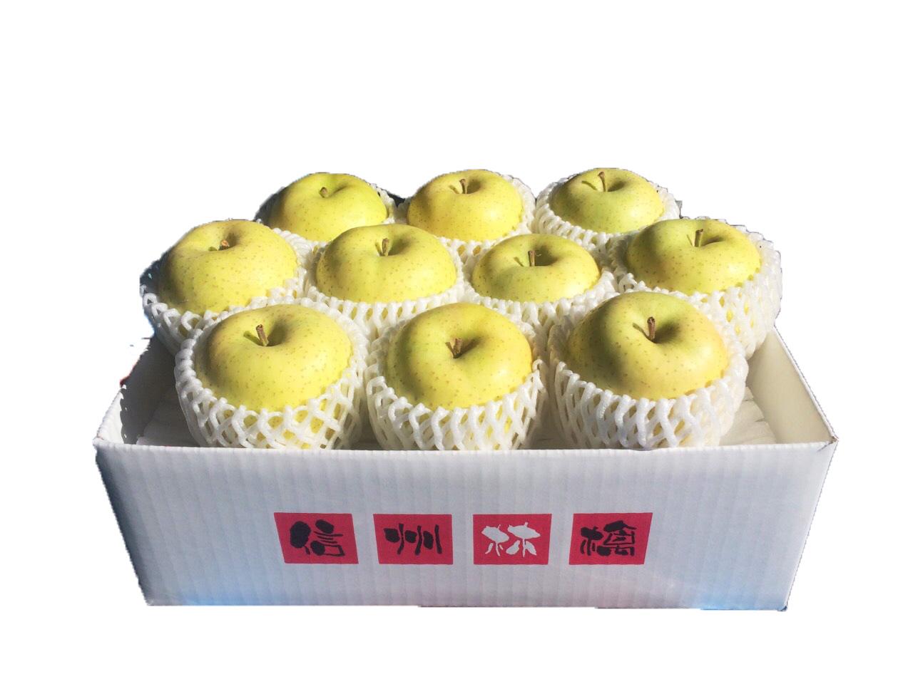 信州産 王林 3kg(8~11玉) No.522