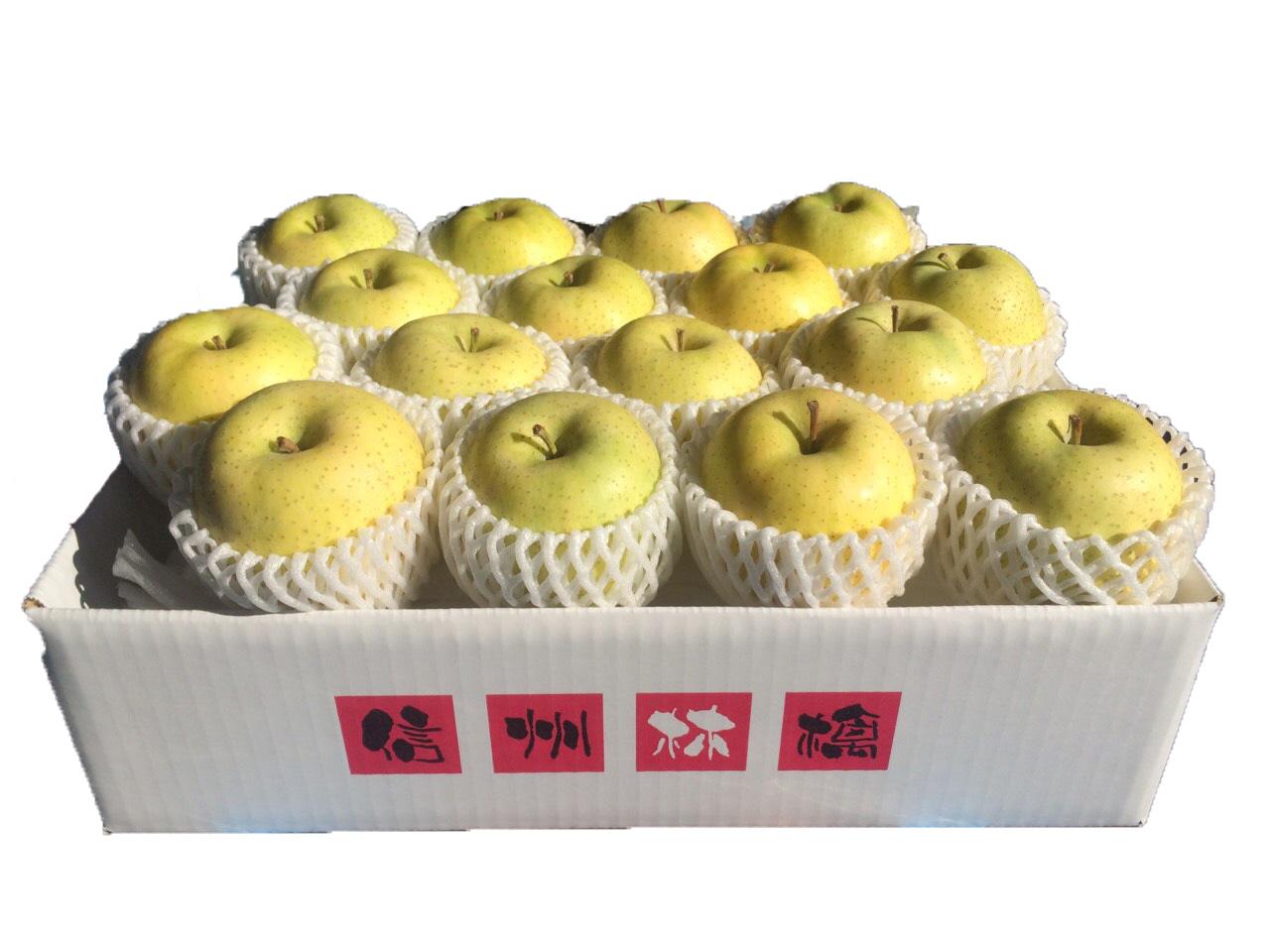 信州産 王林 5kg(14~18玉) No.752