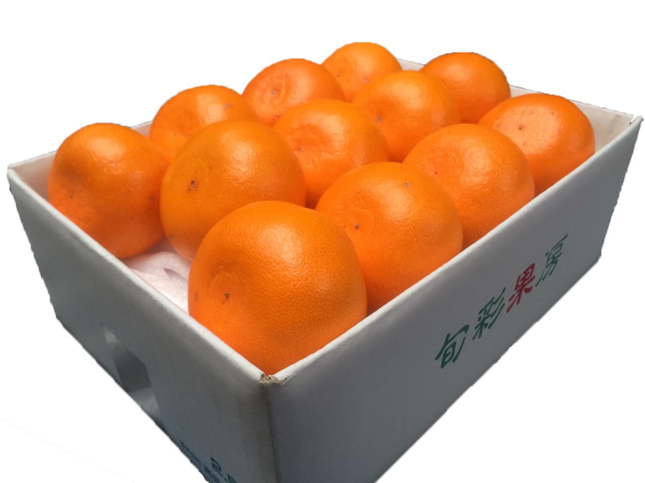 愛媛県産 せとか 約2.5kg (10~13玉)【028】