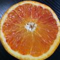愛媛県産 ブラッドオレンジ 約5kg(19〜24玉)【048】