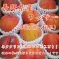 信州産 ワッサー2.3kg(8~10玉)【153】