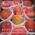 信州産 ワッサー2.3kg(8~9玉)【093】