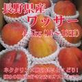 信州産 ワッサー4.5kg(16〜18玉)【094】