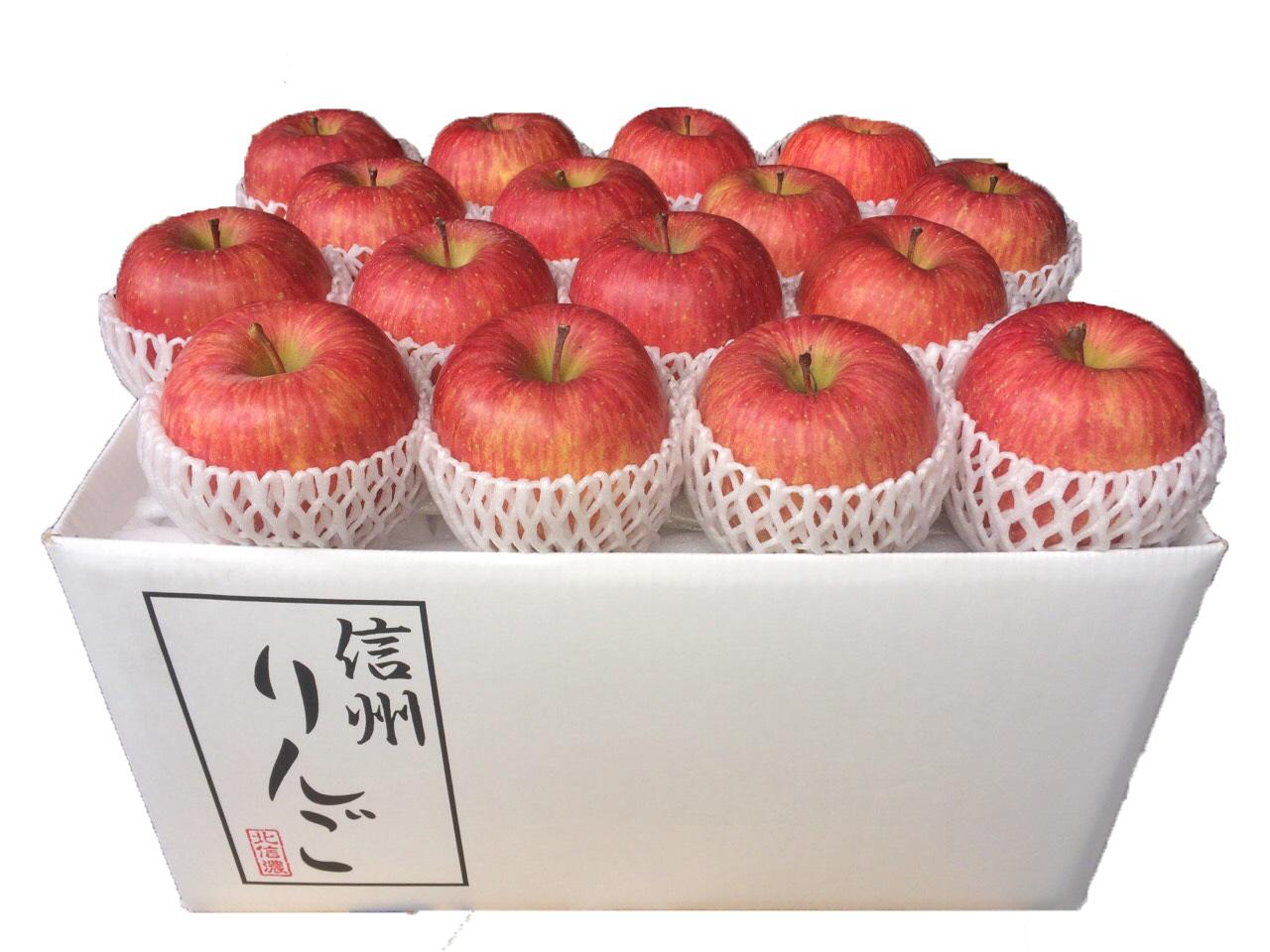 長野県産北信濃サンふじ 秀品10kg(26~32玉) No.500