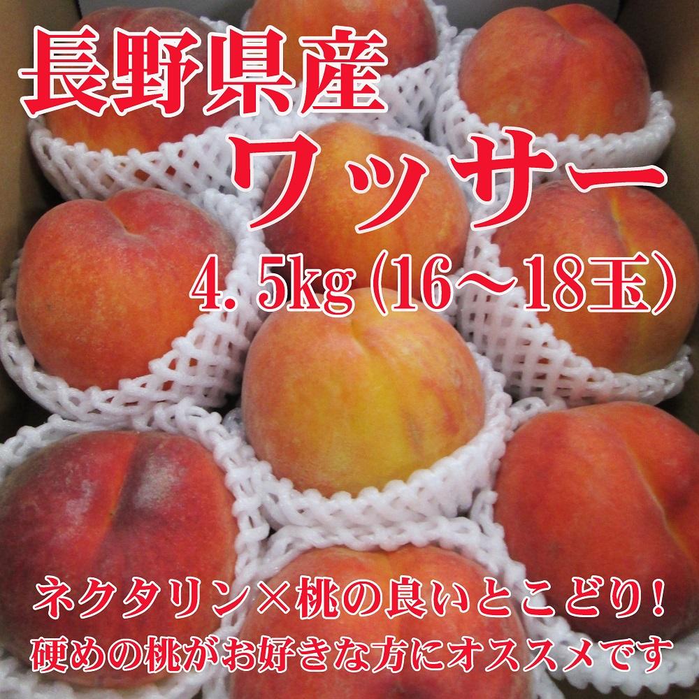 信州産 ワッサー4.5kg(16~18玉)【154】