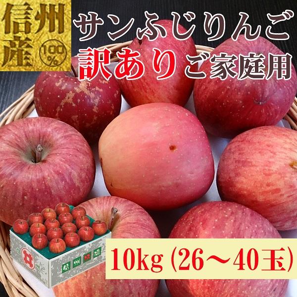 信州産 格外サンふじ 10kg No.669