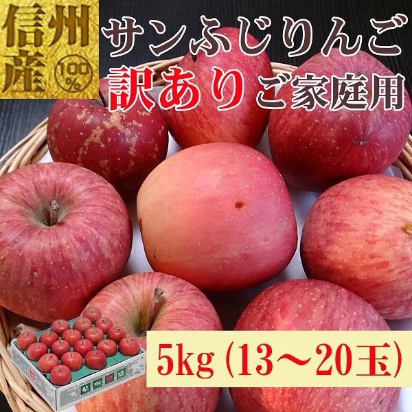 信州産 格外サンふじ 5kg No.586