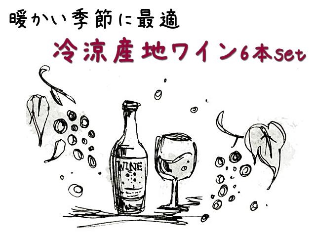 暖かい季節に最適!冷涼ワイン6本セット