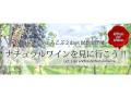 酒泉洞堀一ワイン試飲会「ナチュラルワインを見に行こう!!」 5/21 6/25 2DAYS