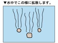 チヌパワー激重_4