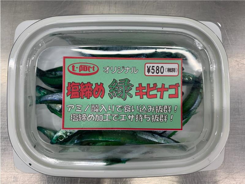 緑キビナゴ