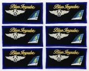ブルーインパルス ネーム 1番機~6番機  刺繍、マジック加工付