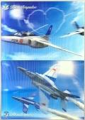 自衛隊グッズ  3Dブルーインパルスポストカード 2種類 各1枚入り