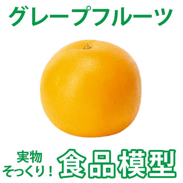 【食品模型 寺院用仏具 神社用神具】グレープフルーツ