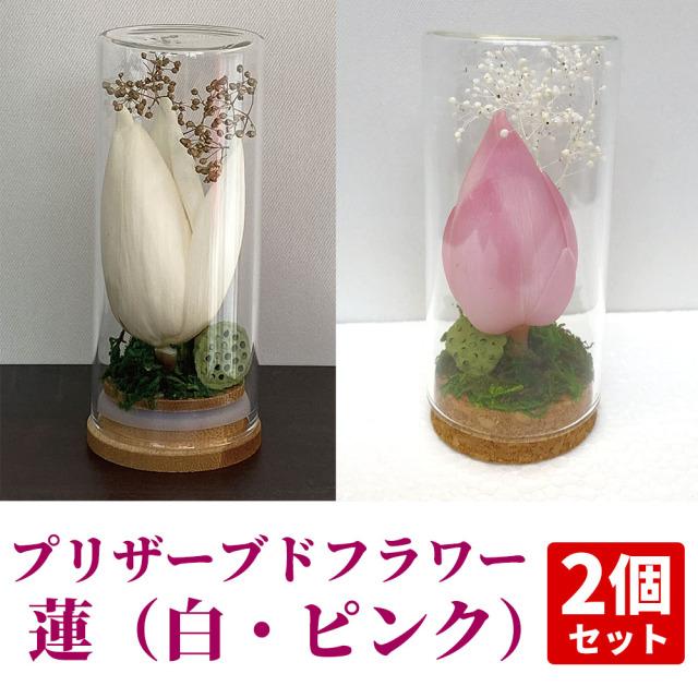 納骨堂・仏壇用プリザーブドフラワー蓮 2個セット【常花 造花】