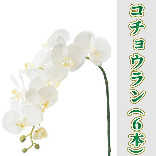 コチョウラン 6本セット【造花 常花】