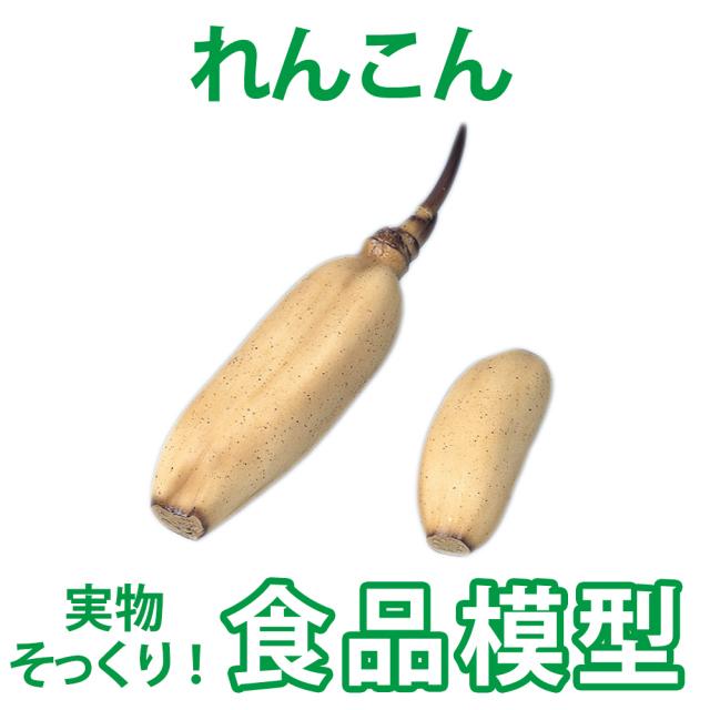 極上お供え品 実物の質感 果物・野菜お供え 蓮根【樹脂製 食品模型 寺院用仏具 神社用神具】