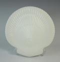 ウェッジウッド WEDGWOOD ノーチラス  シェルトレー 22cmプレート 陶器【ウェッジウッド廃盤品/個数限定】
