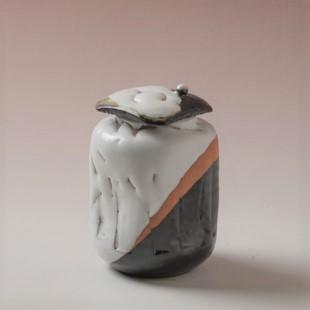 萩焼(伝統的工芸品)茶入掛分け(鬼白松&黒釉)掛外し四方(共蓋付)