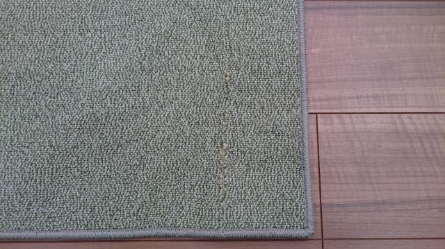 訳あり 傷物 カーペット 日本製 約3帖 ナイロン じゅうたん 絨毯 防汚 防臭 防ダニ 抗菌 防炎 制電 撥水 ループ 【品名 B品ジュース】 約3畳 190×240cm